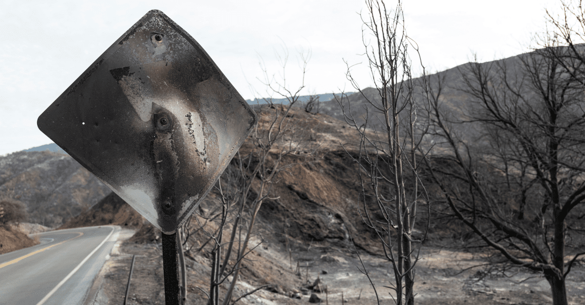 California Fire Aftermath